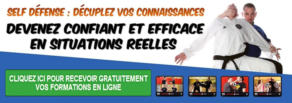 formation en ligne self defense