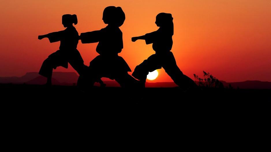 pratiquants d'arts martiaux avec coucher de soleil en fond